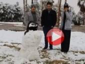 بالفيديو: السعودية تكتسي بالأبيض والجمال تمشي على الثلوج!