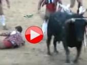شاهدوا الفيديو: مبارزة الثيران..هواية خطيرة ومؤلمة!