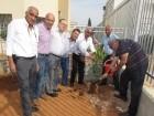 زرع أشجار وغرس أشتال في روضات وبساتين يافة الناصرة