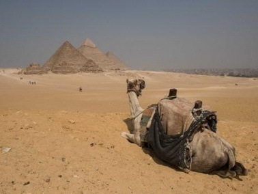 موسكو تعلن استئناف الرحلات الجوية إلى مصر في هذا التاريخ