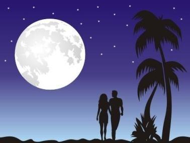 يا نجوم الليل......بقلم: احمد صالح طه من كوكب