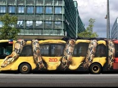 لو نفهم منكم كيف نجحت الافعى باختراق الباص