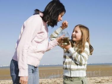 الطحالب البحرية مفيدة للوقاية من نوبات القلب