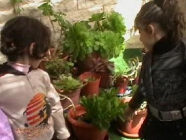 الناصرة:روضة الخنساء تشارك ييوم النظافة