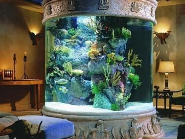 بالصور:أحواض سمك جدارية..قمة الروعة والجمال
