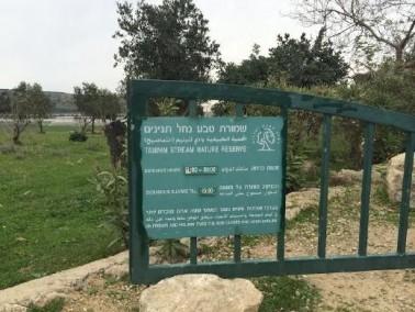 جسر الزرقاء: إعتراضات على حديقة وادي التماسيح