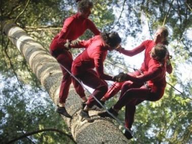 بالصور: الرقص على الشجر في الغابات الكندية