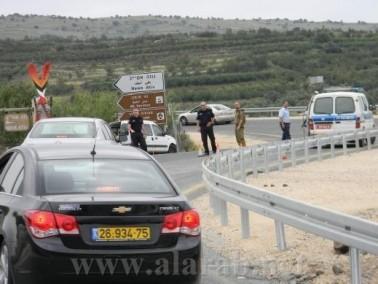 اسرائيل تقرر زراعة اشجار الكينا في مناطق حدودية بالجولان