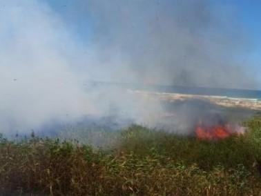 حريق في منطقة شاطئ معيان تسفي