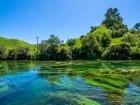 رحلة مصورة الى هاميلتون- نيوزلندا