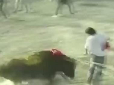 بيرو: 9 مصابين بعد مهاجمة الثيران للحشود في مهرجان