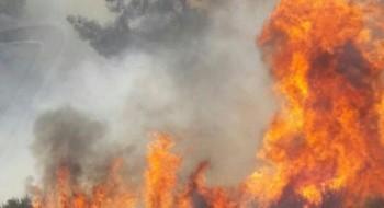 حريق في منطقة حرشية في طبريا وطواقم الاطفاء والانقاذ تهرع للمكان