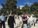 مسرى ميديا: تصاعد وتيرة الاقتحامات في الأقصى وحملة شرسة ضد المصلين