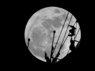 شاهدوا بالصور.. القمر العملاق من المانيا والهند