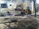بلدية حيفا: بدأنا العمل على إعادة تأهيل الغابات الطبيعية