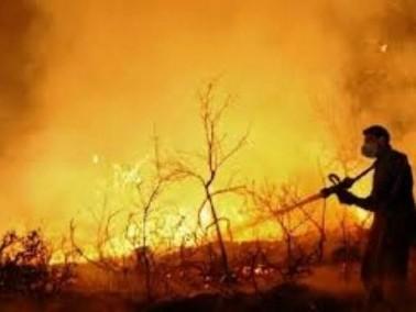 تخليد ذكرى ضحايا كارثة حريق الكرمل