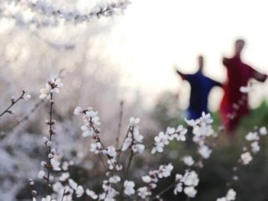 بوادر الربيع تظهر في شرق الصين