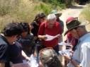 مجدالكروم: البدء بتخطيط منطقة كروم الزيتون الغربي وباب الوادي