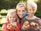 فوائد قشور البطاطا.. تعرفوا عليها