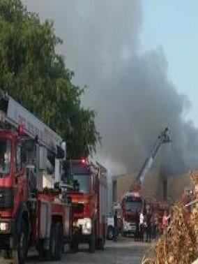 اندلاع حريق في حافلة في الجليل الاعلى