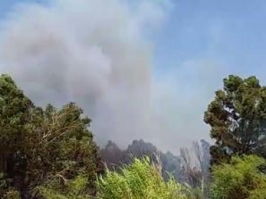 سلطة الإطفاء: إندلاع حريق في بارك هيردين