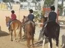تفعيل برنامج ركوب الخيل العلاجي في مدرسة عبد العزيز أمون في دير الاسد