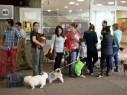 الجلبوع: اكتشاف المزيد من حالات مرض الكلب وتحذير للمواطنين