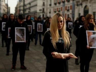 اسبانيا: احياء اليوم العالمي لحقوق الحيوان