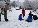 إدارة جبل الشيخ: سيتم إغلاق الموقع امام الزوار غدا السبت بسبب الثلوج الغزيرة