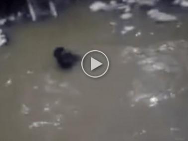 فيديو مروع: غرق ثلاثة أطفال في بئر بالجزائر