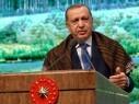 أردوغان: عمليات تطهير عفرين من الإرهابيين مستمرة وأمريكا لن تخدعنا