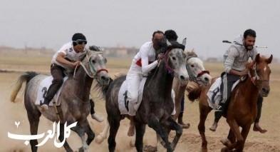 مهرجان الخيول في القامشلي السورية