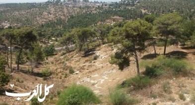 الناصرة: اللوائية للاستئناف تصدر قرارها بشأن شنلر