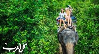 نصائح ذهبية قبل السفر الى تايلند