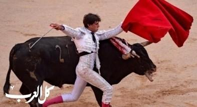 صور: مهرجان مصارعة الثيران بإسبانيا