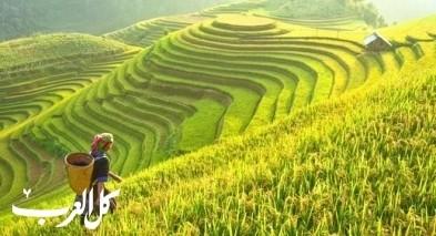 أجمل الوجهات السياحية في أندونيسيا