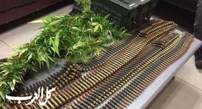 الاعتقال مشتبه بحيازة الأسلحة وضبط كمية من الكنابس