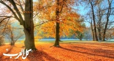 الأحد أول أيام فصل الخريف