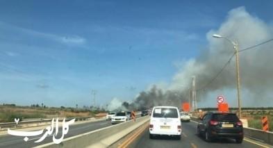 اندلاع حريق في أراضٍ زراعية بجانب شارع 65