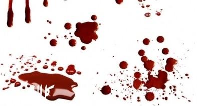 لماذا لا تمتص الأرض الدماء؟