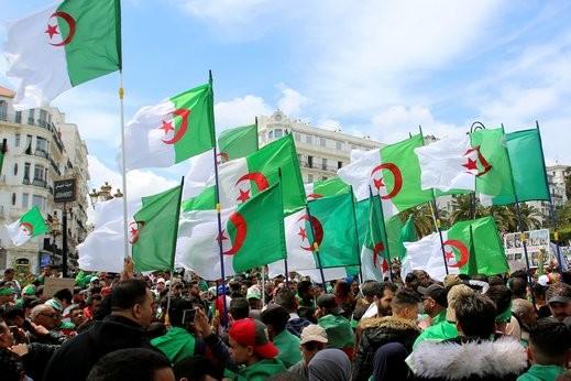 نادي قضاة الجزائر يعلن مقاطعة الانتخابات الرئاسية