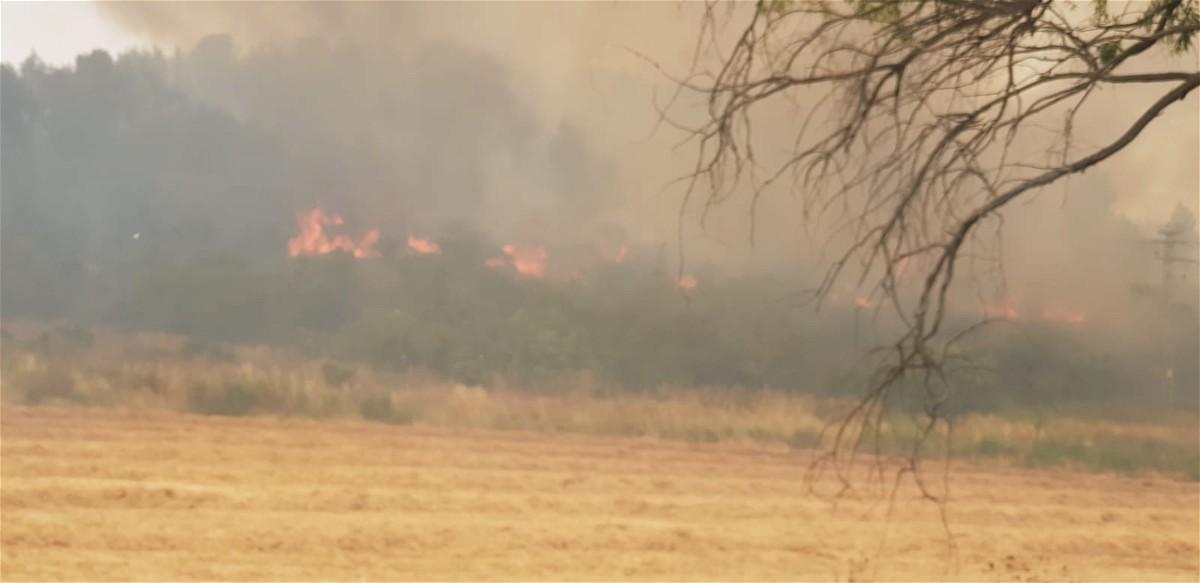 حريق في منطقة أشواك في نهجوت