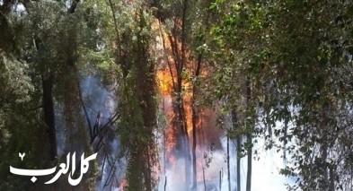 استمرار الحرائق وسلطة الاطفاء تحذّر