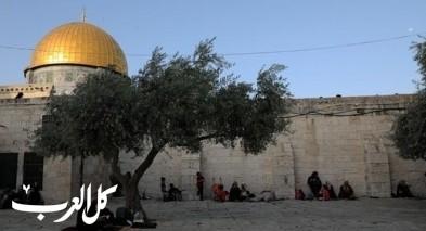الأوقاف الفلسطينية تحذّر من دنيس الأقصى