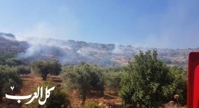 اندلاع حريق كبير في منطقة حرشية بين جولس ويركا