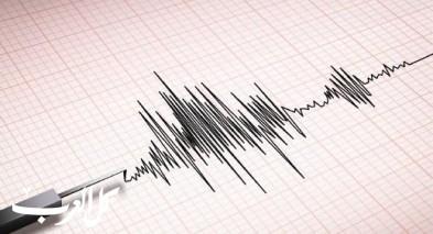 هزة ارضية بقوة 3.8 ريختر تضرب جنوبي البلاد
