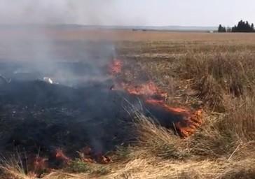 حريق في نير عام بفعل البالونات الحارقة