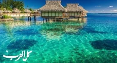 المالديف: أشهر الجزر لرحلات الغوص الساحرة