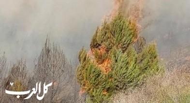 اندلاع حريق بين المشهد وحي هاريونا