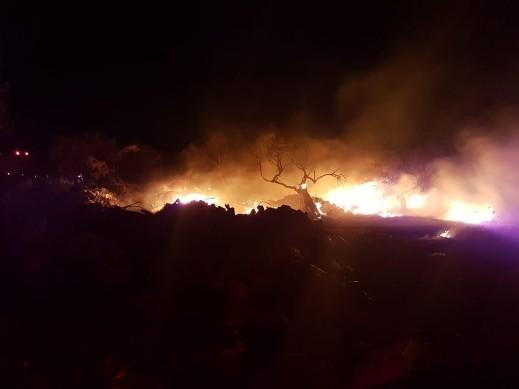 اندلاع حريق في كرم للزيتون في المكر